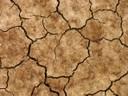 Der Klimawandel beeinträchtigt die Bodengesundheit