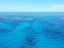 Cairns Sealevel