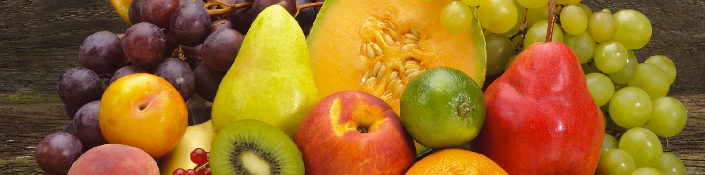 Bachelor of Science Nutrition and Food Science — Landwirtschaftliche